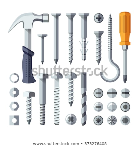 vector set of screw and screwdriver stock photo © olllikeballoon