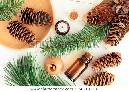 Stock photo: A Bottle Of Pine Essential Oil With Pine Branches And An Aroma Lamp