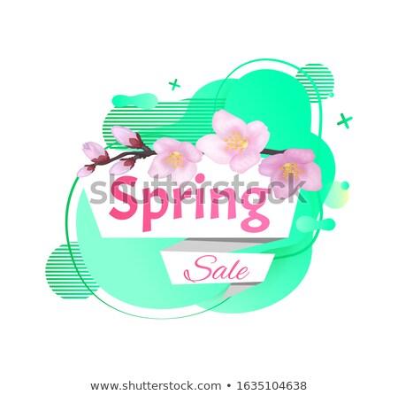 Bahar satış yeşil sıvı biçim Stok fotoğraf © robuart