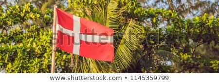 Flag of Denmark against the backdrop of palm trees BANNER, long format Stock photo © galitskaya
