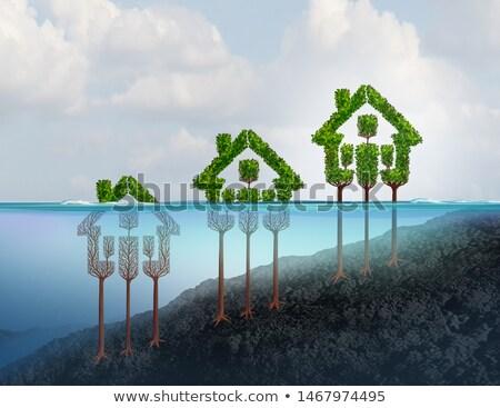 Home schuld financiële onroerend business Stockfoto © Lightsource