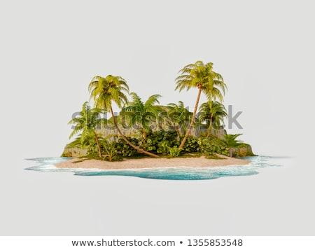 çöl plaj ada sis ışık Stok fotoğraf © papa1266
