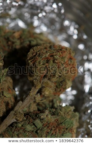 Cannabis For Joint Pain Stock photo © Lightsource