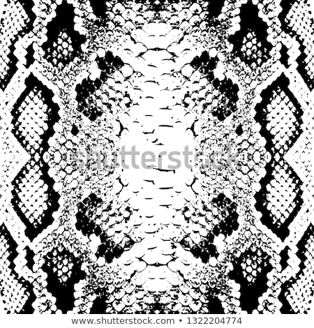 snake scales background Stock photo © clearviewstock