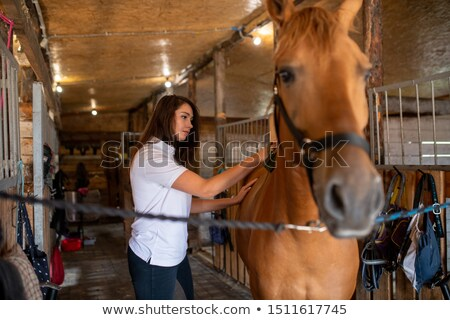 Pretty young sportswoman taking care of her racehorse while brushing top of back Stock photo © pressmaster