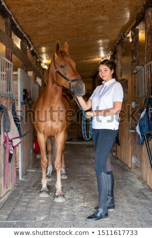 Young sportswoman standing by purebred racehorse inside stable Stock photo © pressmaster