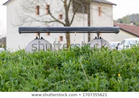 View vuota panchina verde primavera Foto d'archivio © Giulio_Fornasar