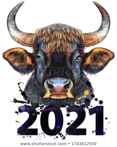 Watercolor illustration of a black powerful bull with number 2021 Stock photo © Natalia_1947