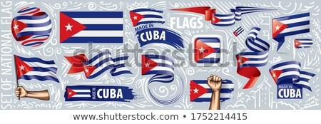 Vetor conjunto bandeira Cuba criador Foto stock © butenkow