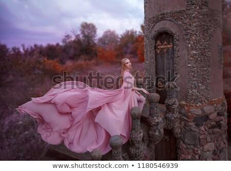 Wonderful long dress on a white. Stock photo © lypnyk2