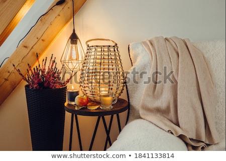 Candellight in bulb Stock photo © designsstock