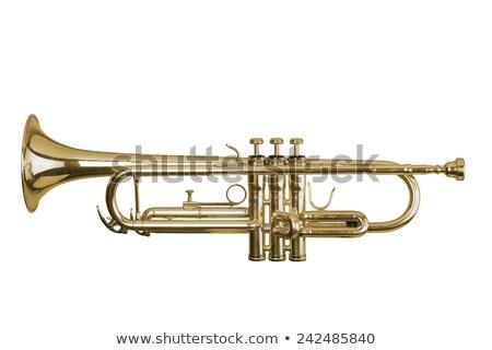 Sárgaréz trombita fehér izolált csiszolt vágási körvonal Stock fotó © sidewaysdesign