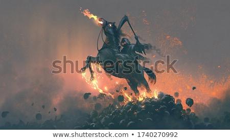 horseman Stock photo © photography33