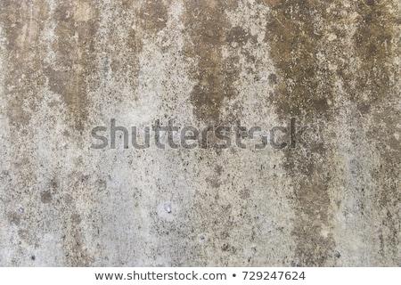 muur · textuur · grunge · gebroken · verweerde - stockfoto © h2o