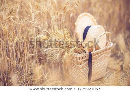 beautiful blonde woman with straw bag stock photo © eireann
