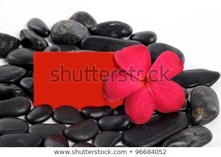 Fekete zen kövek piros virágok bambusz Stock fotó © calvste
