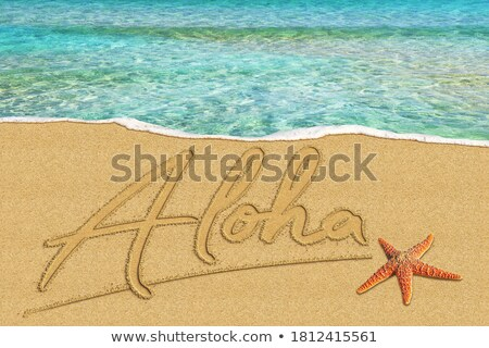 Brown sand beach with written word Welcome Stock photo © lunamarina