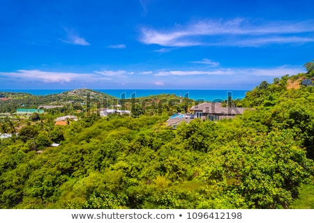 A View of the Ocean from a Scenic Overlook Stock photo © Frankljr