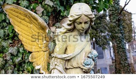 triste · ángel · retrato · nina · moda - foto stock © dolgachov