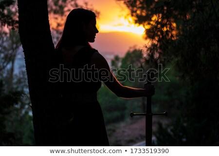 Portret piękna młodych wojownika miecz Zdjęcia stock © curaphotography