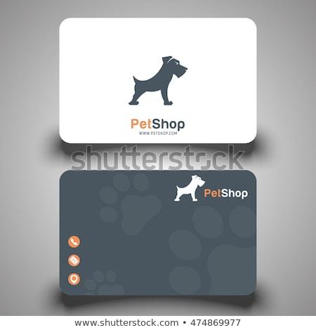 Pet Store Visit Stock photo © cteconsulting