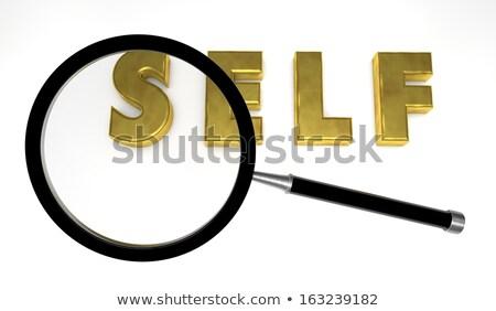 Self Assessment Search Stock photo © chrisdorney