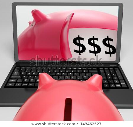 安全 貯蓄 現金 保護された ストックフォト © stuartmiles