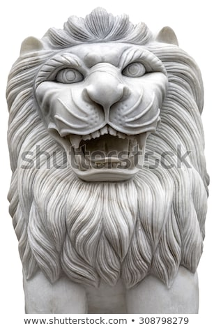 branco · leão · dentes · masculino · boca · grande - foto stock © pzaxe