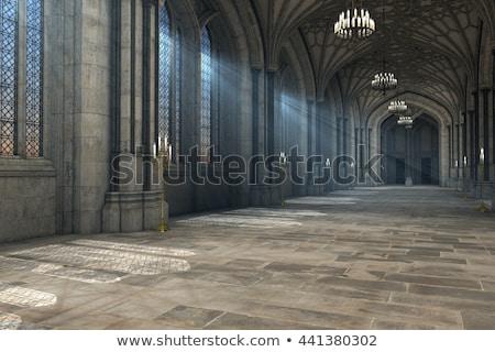 kastély · ajtó · modern · szimuláció · ősi · tölgy - stock fotó © ivonnewierink