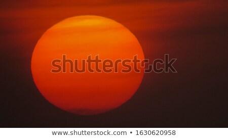 Luminoso tramonto scena tranquilla gabbiano battenti acqua Foto d'archivio © Es75