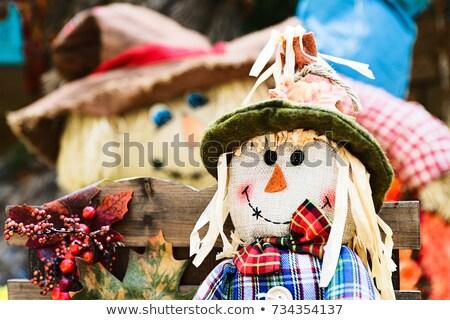 scarecrow close up stock photo © mkucova
