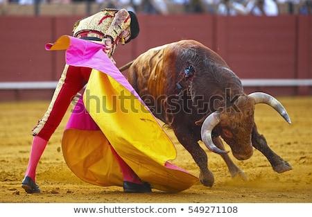 spanyol · fiesta · bika · Madrid · piros · félelem - stock fotó © ocusfocus