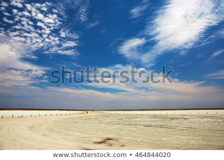 Etosha pan Stock photo © ottoduplessis