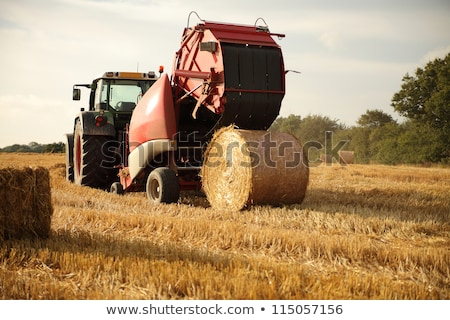 tractor throwing out hay roll Stock photo © franky242
