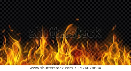 fire flame background vector illustration stock photo © carodi