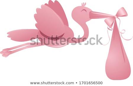 cegonha · bebê · menina · rosa · ilustração · criança - foto stock © adamson