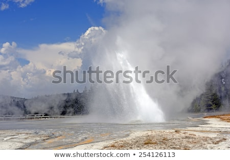 Unusual Geyser Erupting at an angle Stock photo © wildnerdpix