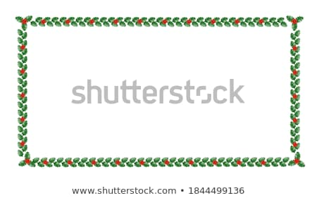 Christmas Holly Border ornamental  Stock photo © Irisangel
