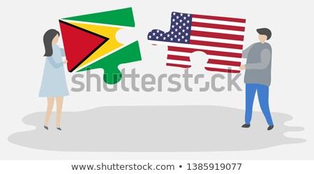 USA Guyana zászlók puzzle vektor kép Stock fotó © Istanbul2009
