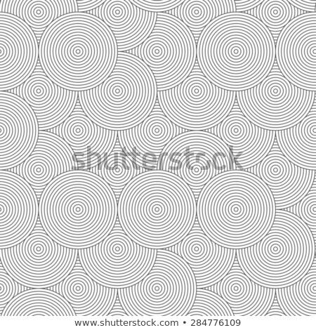 Esbelto cinza listrado círculos acaso sem costura Foto stock © Zebra-Finch