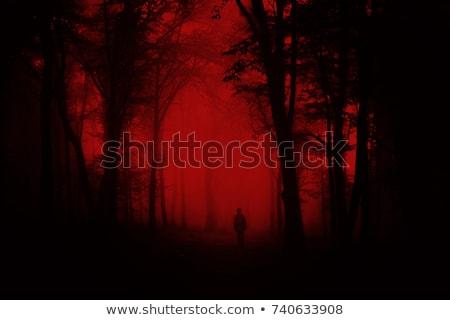 Horror hátborzongató vámpír nő művészet buli Stock fotó © kentoh