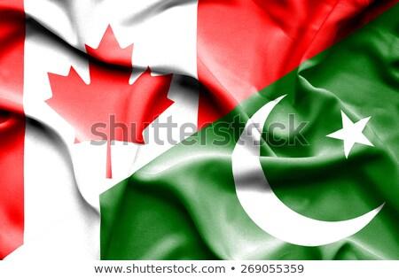 カナダ パキスタン フラグ パズル 孤立した 白 ストックフォト © Istanbul2009