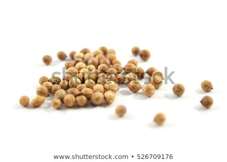 Organik kurutulmuş kişniş tohumları makro Stok fotoğraf © ziprashantzi