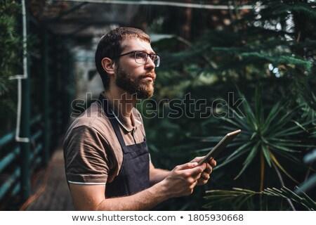 Portrait of male gardener using tablet in orangery Stock photo © deandrobot