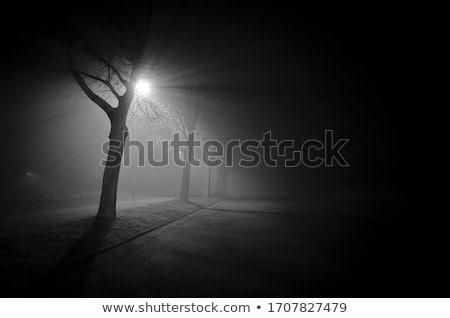 Stock photo: Night road