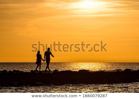 пару иллюстрация земле смешные брак почвы Сток-фото © adrenalina