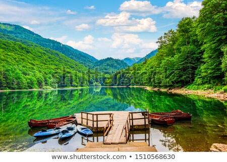 infravörös · panorámakép · tájkép · fák · tó · fa - stock fotó © steffus