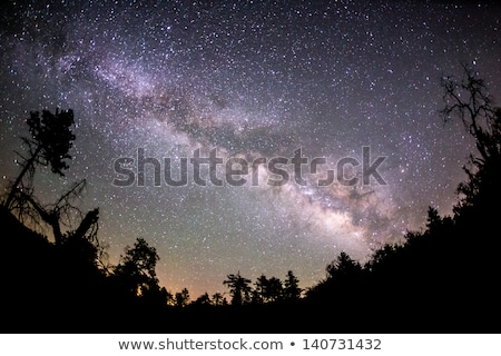 The Milky Way and some trees in mountains Stock photo © zurijeta