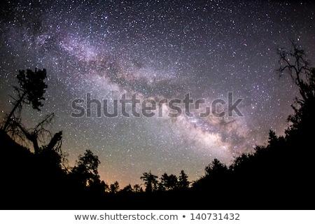 Mleczny sposób drzew góry miasta lasu Zdjęcia stock © zurijeta