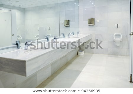 Public empty restroom with washstands mirror Stock photo © zeffss